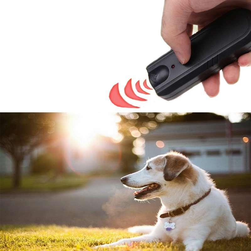 Aparat cu ultrasunete pentru câini