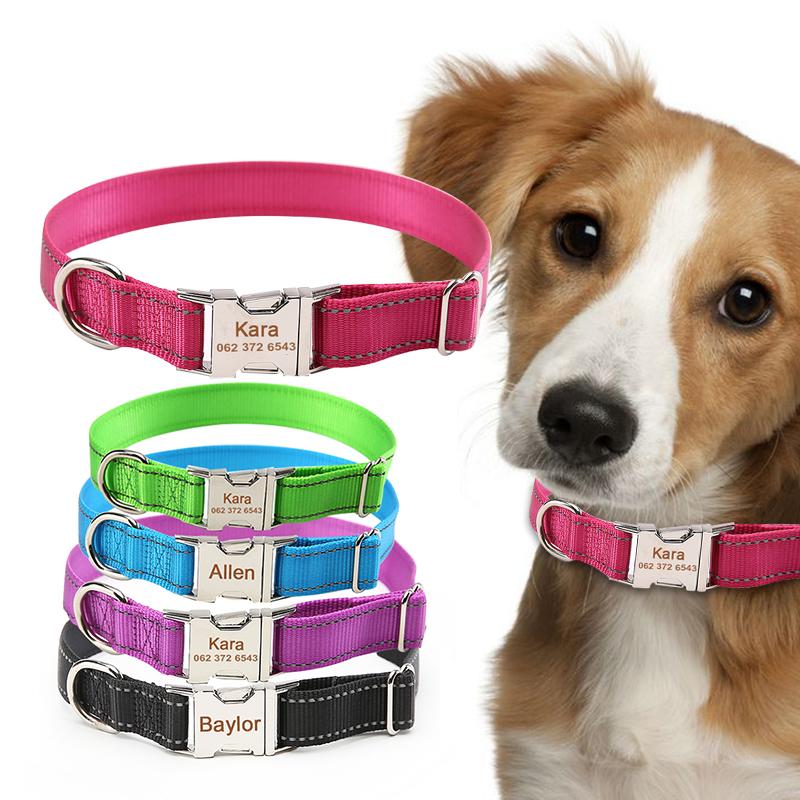 Curea personalizată câine